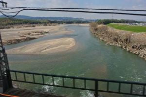大和川の支流