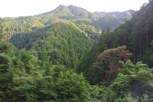 極楽寺手前の山並み