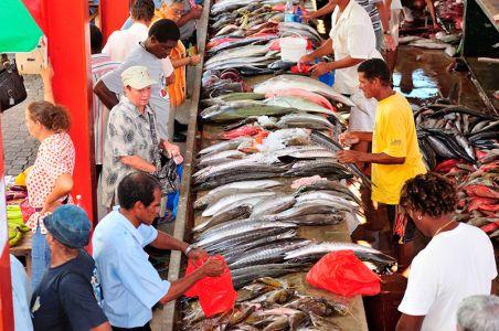 市民が集うマーケットで、魚を選ぶ人たち