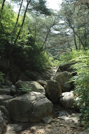 南山の澄んだ空気と心地よい森林浴、徒歩と自転車でどこへでも行かれる便利さから、引退後の人生を慶州で送る人が多いという