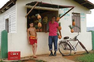 散策中に見つけたフルーツ販売所。亜熱帯のキューバでは、パイン、バナナ、マンゴー、グアバなどが各地で売られている