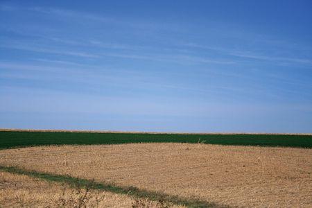 アイオワ農業地帯の風景