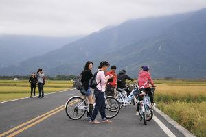 田んぼの中の道路をサイクリング