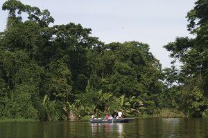 ボートに乗ってジャングルをクルーズ