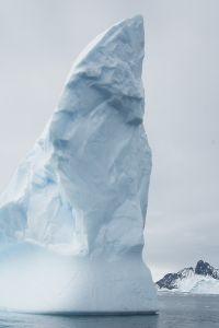 """""""Antarctic Goddess""""=7日目、シエルバ・コーブ"""