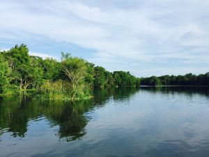 天然の泉が湧き出る川