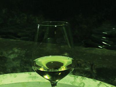 カビとほこりにまみれた年代物のグラシェビナのボトルの群れ=イロックの「Stari Podrumi」で