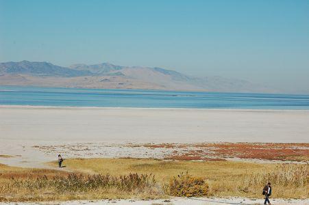 グレートソルトレークの砂浜。水面に目をこらすと、ブラインシュリンプと呼ばれる小さなエビがいっぱい泳いでいた
