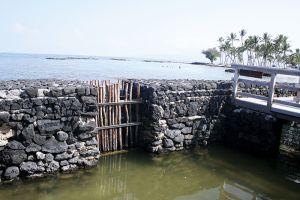 マカハという名の養魚池の柵