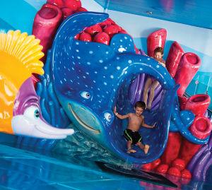 子供向けのプール