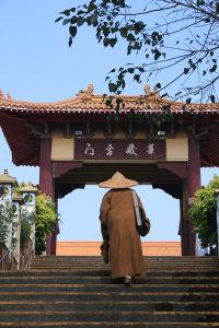 尼僧が案内してくれる。世界各地に寺があるため、みんな英語がうまい