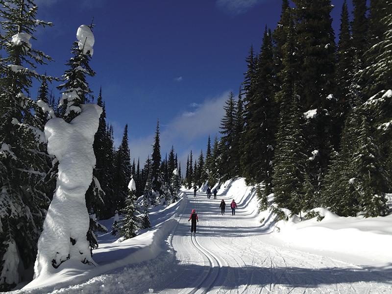 シルバースターのノルディック・トレイルは、カナダでも有数の美しさだ Photo © Mirei Sato
