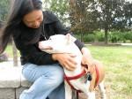 わたしに「犬の親」になるということを一生かけて教えてくれた愛犬ジュリエット Photo © Maho Teraguchi