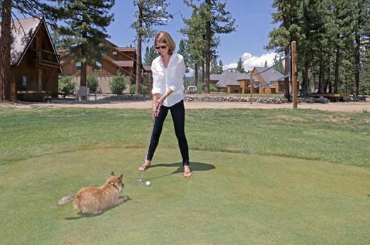 Golf-Dog---Credit-Greyson-Howard