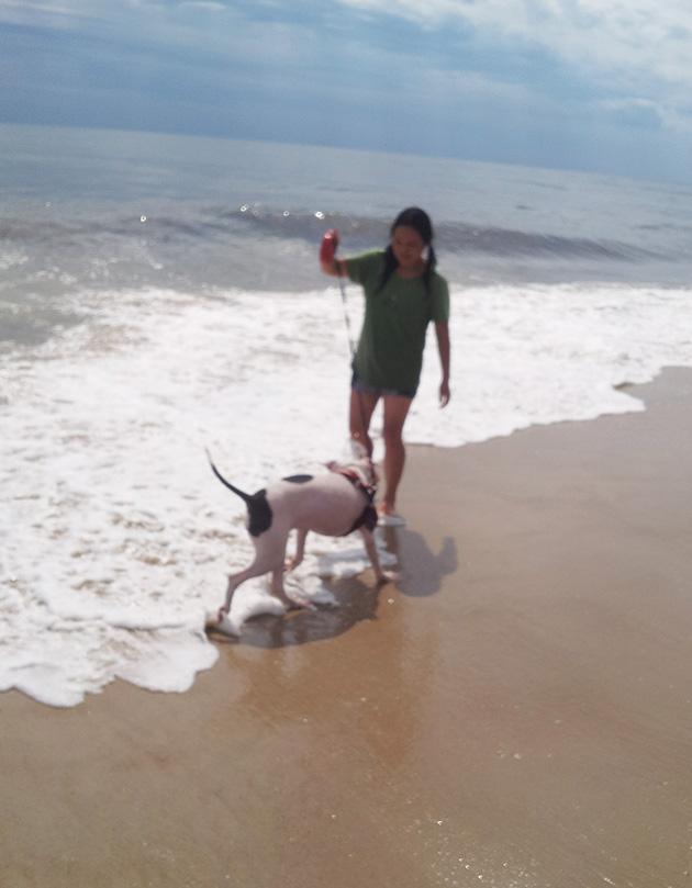 ビーチで愛犬ノアと遊ぶ著者 Photo © Maho Teraguchi