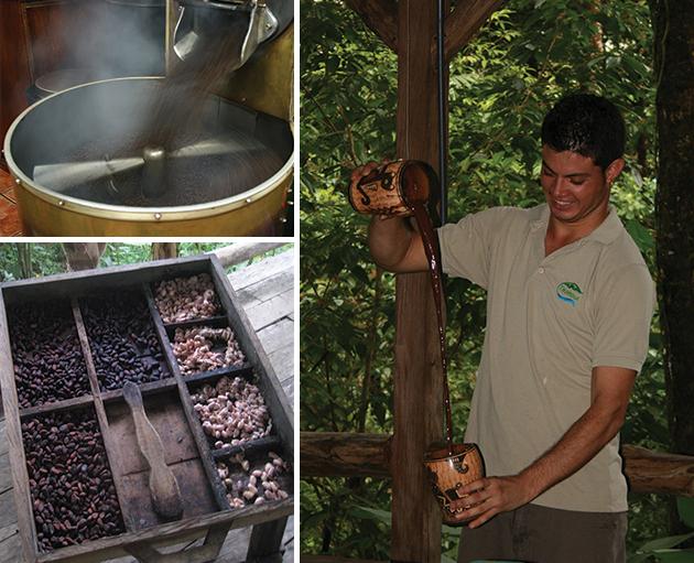 名産のコーヒー。湯気をたてて豆をひく(左上)カカオ豆(左下)の味を最大限に楽しんで飲むホットチョコレート(右) Photos © Mirei Sato