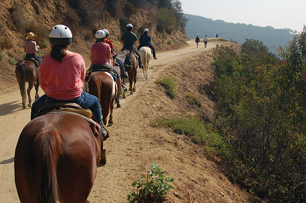 馬、犬、人が共有するトレイル。崖は怖いが、眺めは素晴らしいPhoto © Mirei Sato