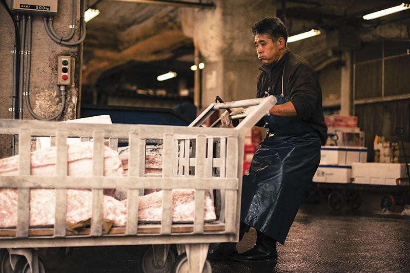 買われたマグロたちが運ばれていく Photo © Nobutoshi Mizushima