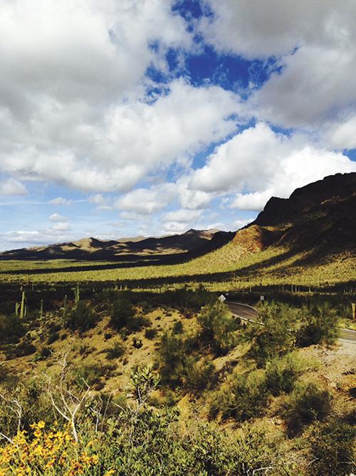 砂漠の風景 Photo © Chizuko Higuchi