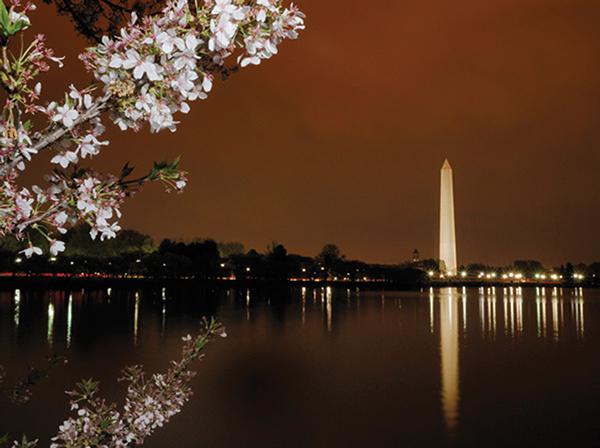 ワシントン・モニュメントNational Cherry Blossom Festival