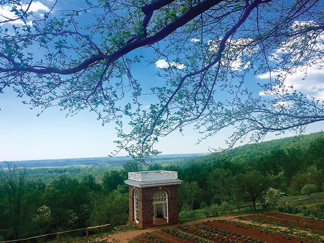 トーマス・ジェファーソン大統領の邸宅「Monticello」の農園。大勢の奴隷が働き、ワインのブドウ栽培も行われた Photo © Mirei Sato