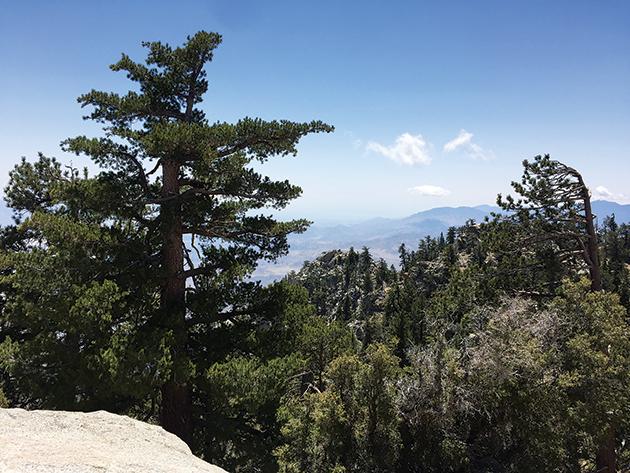 サンハシント山州立公園の眺め Photo © Mirei Sato