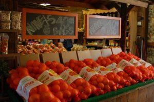 新鮮な果物やオレンジジュースを売っている「Orange Patch」のストアPhoto © Mirei Sato