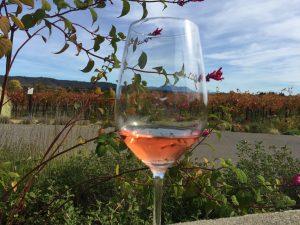 「Quivira Vineyards and Winery」のロゼワイン。セント・へレナ山を遠くに望むPhoto © Mirei Sato