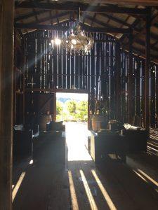 古い納屋を改装した「Soda Rock Winery」。 木漏れ日が差し込むPhoto © Mirei Sato