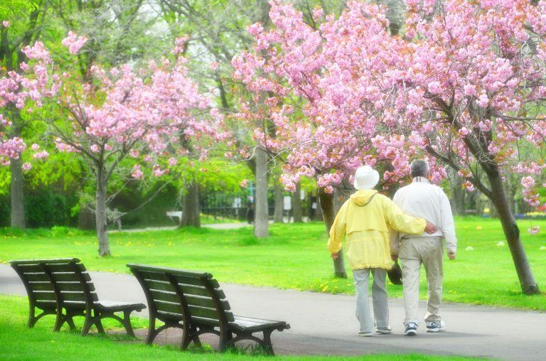 日本に住む老親の介護
