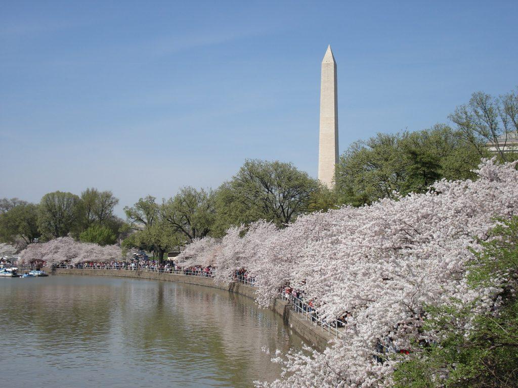 アメリカ観光の首都 Washington, DC